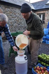 Apple Day Pouring Juice