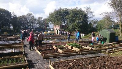 Cllybebyll Community Growers